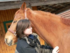Alternative Tiermedizin führt zu Entspannung bei Pferden.