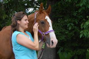 Akupressur am Kiefergelenk - für viele Pferde nach dem Reiten sehr wohltuend